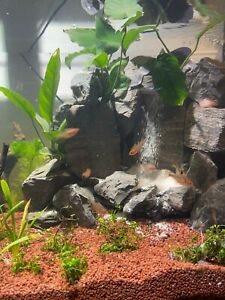The-Yosemite-Scapable-SandFall-Underwater-Sand-Waterfall-for-Aquariums-SEE-VIDEO