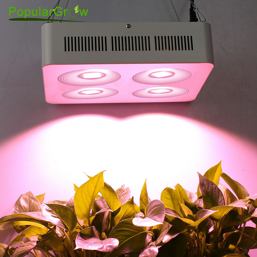 bellissima Full Spectrum 800W COB LED LED LED Grow Light for Indoor Plant Veg Flower Growth Lamp  miglior prezzo migliore