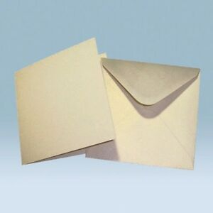Image Is Loading 50 Large Square Card Blanks Ivory Gold Dust