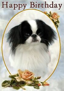 Image Is Loading Japanese Chin Dog Design A6 Textured Birthday Card