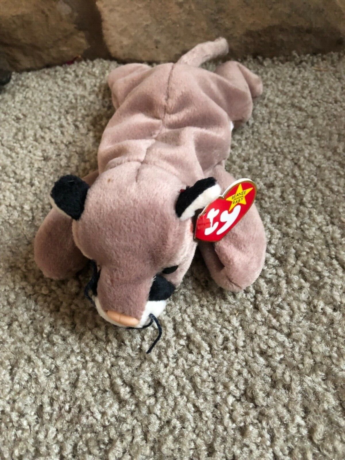 Canyon Ty beanie baby rare with errors