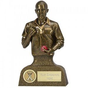 100% De Qualité A1527b Résine Cricket Trophy Taille 13.5 Cm Gravure Gratuite-afficher Le Titre D'origine