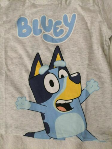 NWT Bluey Pyjama Size 6 Unisex Boys Girls Pj Sleepwear Sleep Pajama set cotton