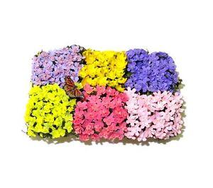 Wilhelmina Artisan Crafted Wood Flat of Flowers w Butterfly Dollhouse Miniature