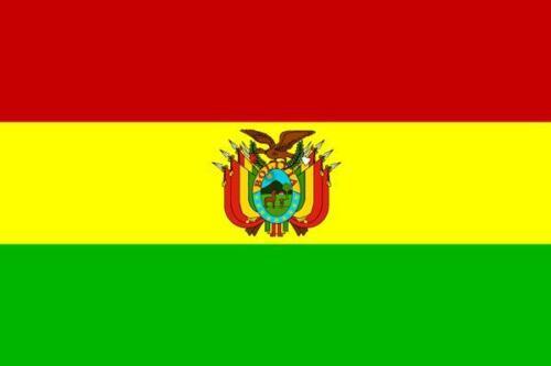 Fahne Flagge Bolivien mit Wappen 30 x 45 cm
