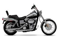 Custom 42 Stretched Front Fender Stripe 2003 Harley Davidson 100th Anniversary