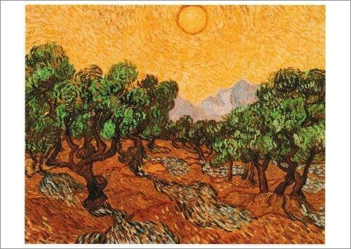 "Kunstkarte Vincent van Gogh /""Olivenbäume/"""
