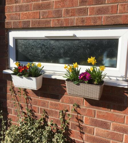 Boîte de fenêtre Duraboard Seuil fixations supports No Drill pas de trous pas de vis fleurs Herbes