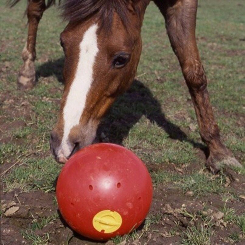 Likit  Snak-a-ball Stable  Field Toy