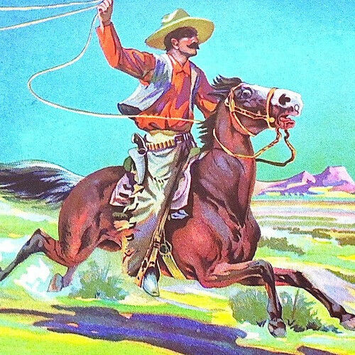 Vintage Original 1920s BRONCO Orange Fruit Citrus CRATE BOX LABEL Cowboy Horse