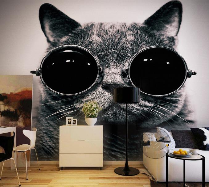 3D Sonnenbrille Katze 85 Tapete Wandgemälde Tapete Tapeten Bild Familie DE