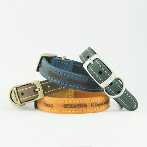 Dog-Collars-Ancol-Personalised-Dog-Puppy-Collar-Timberwolf-Leather-Leads-Leash