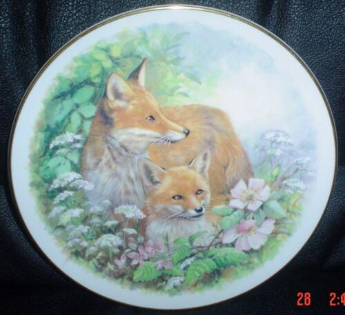 Nicholas John Fine Bone China Fox Collectors Plate