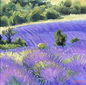 """Abbott Oil Stretch Canvas 12""""x12"""" Rolling Lavender Fields Of Provence France"""