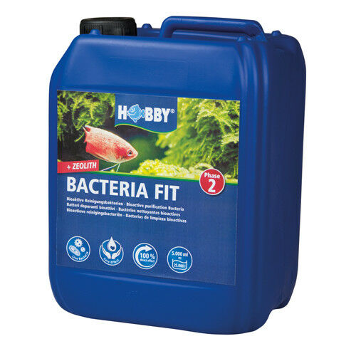 Hobby Bacteria Fit, 5.000