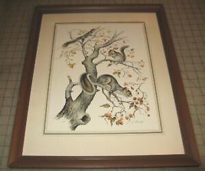 3-SQUIRRELS-IN-TREE-J-Lockhart-11-034-x-14-034-Glass-Framed-Color-Print-Lithograph