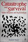 Catastrophe and Survival: Walter Benjamin and Psychoanalysis by Elizabeth Stewart (Paperback / softback, 2012)