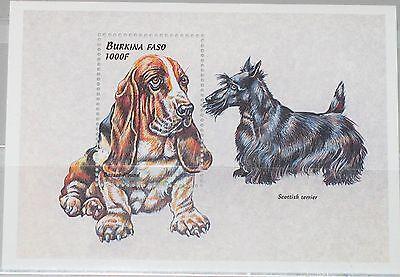 Gewidmet Burkina Faso 1999 Block 196 S/s 1150 Hunde Dogs Hunderassen Fauna Tiere Mnh Kunden Zuerst Afrika Briefmarken