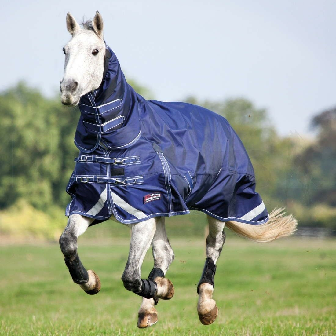 Shires Typhoon heavy weight turnout combo navy all Größes