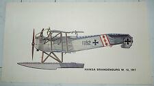 AVIATION CARLO DEMAND PLANCHE 48.5 X 27 CHASSE HANSA BRANDENBURG W. 12 1917
