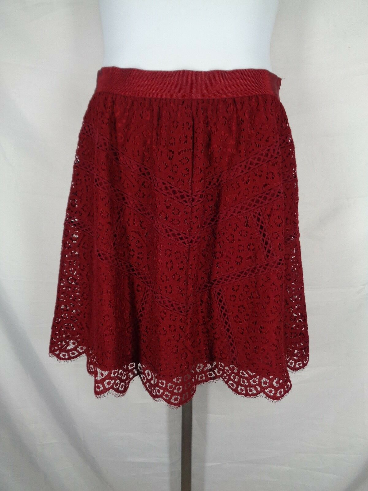 Ann Taylor Lace Skirt Size 14 Burgundy Wine Red Scallop Hem Knee Length New