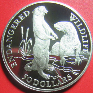 1991-COOK-ISLANDS-50-SILVER-PROOF-EUROPEAN-OTTERS-ENDANGERED-WILDLIFE-RARE-COIN