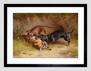 painting animal dachshund dog fox reichert hunting framed art print