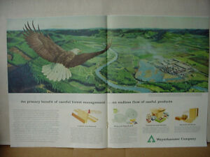 Details about 1960 Weyerhaeuser Company Lumber Building Products Eagle  Vintage Print Ad 10052