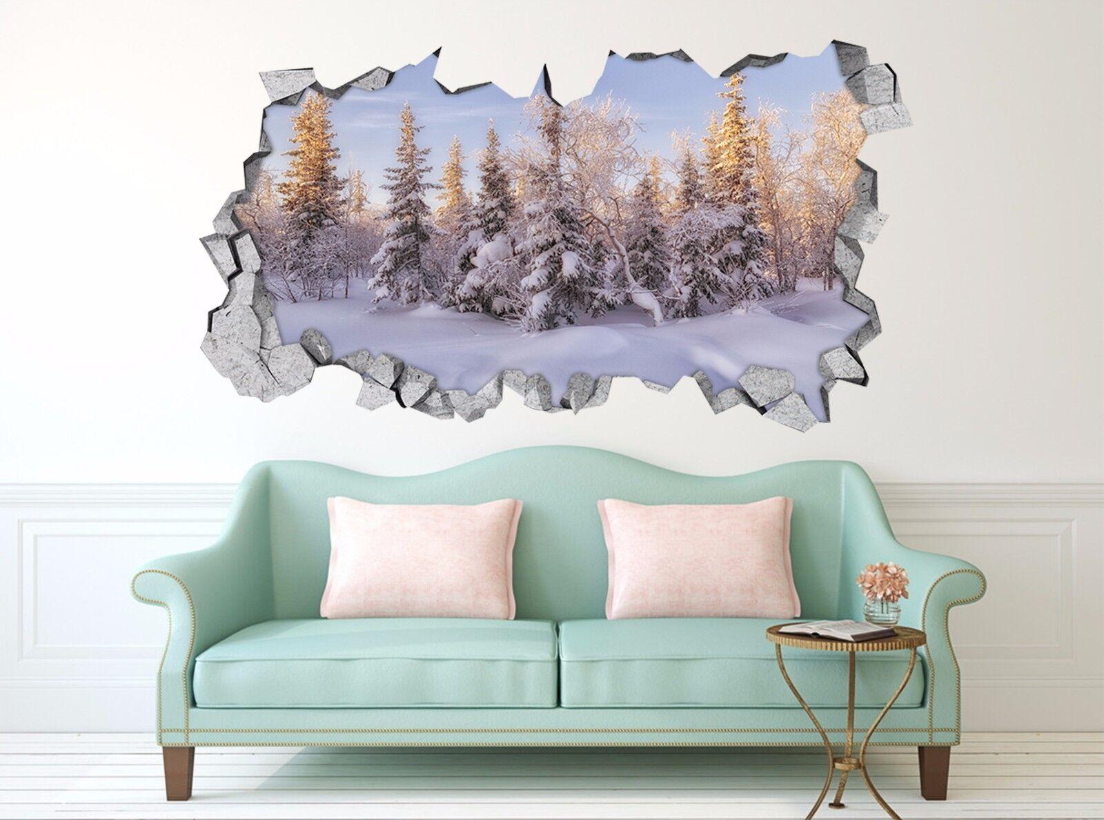 3D Schnee Wald 757  Mauer Murals Mauer Aufklebe Decal Durchbruch AJ WALLPAPER DE