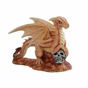 Details about Anne Stokes Age of Dragons Desert Dragon Wyrmling on Skull  Head Rock Figurine