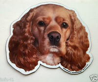 ***Cocker Spaniel Dog Magnet***Anywhere / Car Magnet