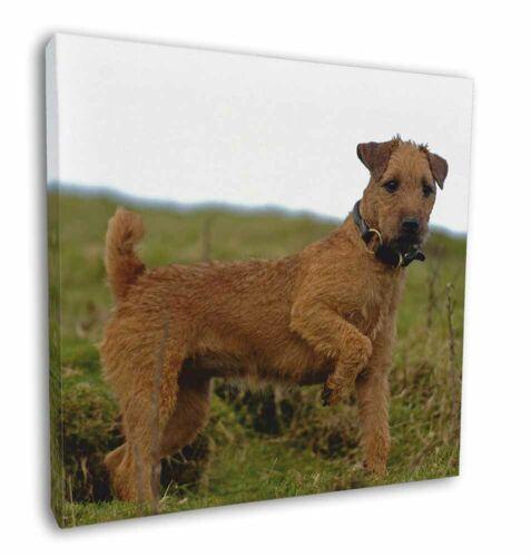 "AD-LT1-C12 Picture Print Lakeland Terrier Dog 12/""x12/"" Wall Art Canvas Decor"