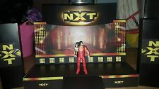 WWE Custom made NXT STADIO per il WRESTLING FIGURE