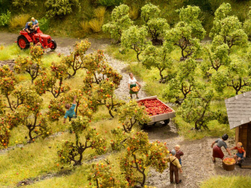 Apfelbäume ca 3,5 cm neu H0//TT Noch 21532 Apfelplantage 12 Stk