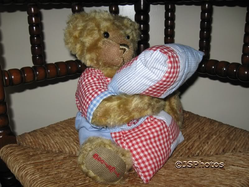 Metro Soft Toys UK Benjamin Bear with Pillow 9th LE