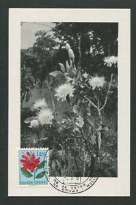 RUANDA-URUNDI-MK-1958-FLORA-PROTEA-MAXIMUMKARTE-CARTE-MAXIMUM-CARD-MC-CM-d7843