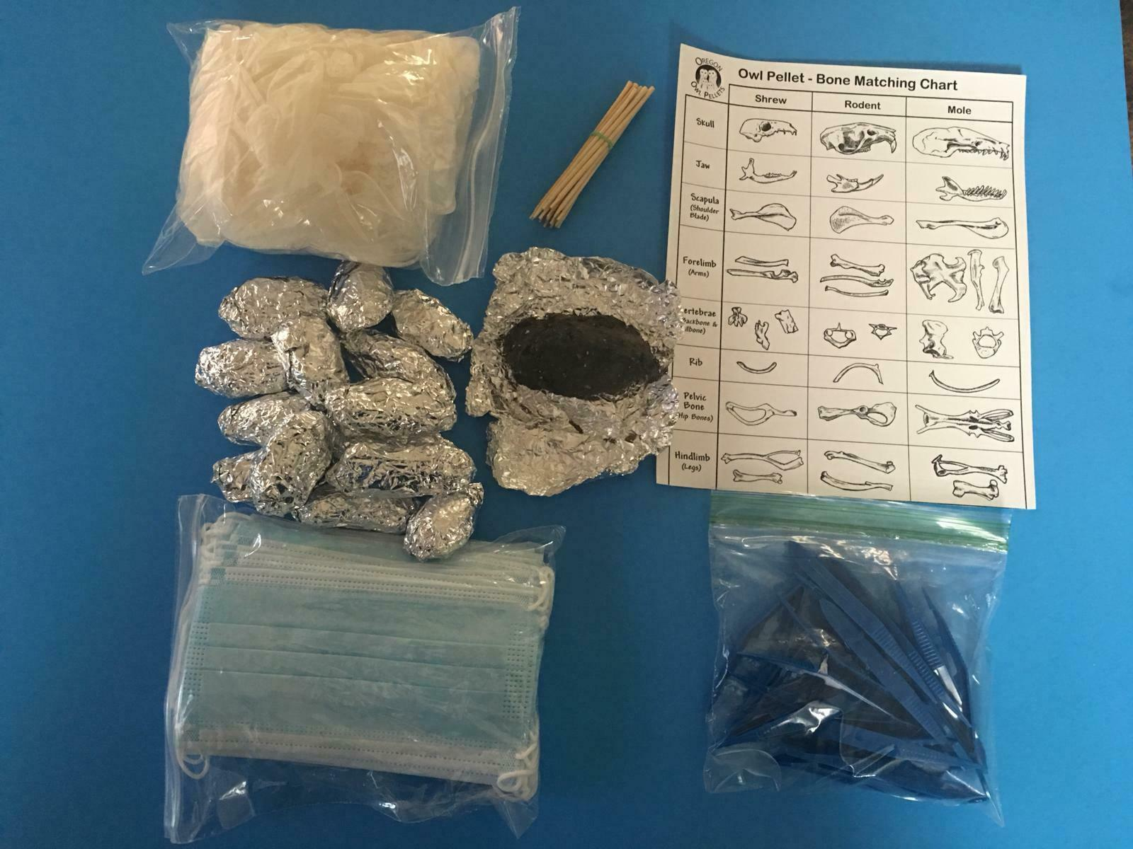 Owl Pellet Dissection Kit 15 Count Large Pellets (2+ Inch)