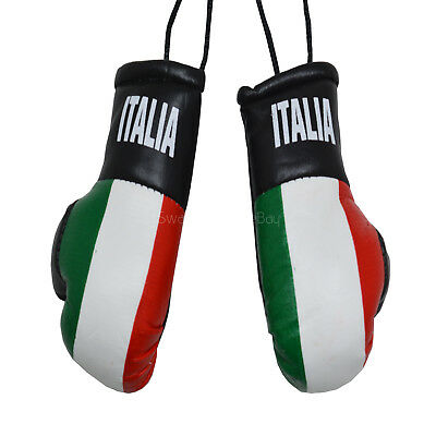 CAR Van Boxing Gloves Hanging Decoration Flag Mirror Office Accessory IRELAND