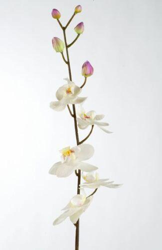 Orchidee Phalaenopsis Seidenblume Kunstblume weiß creme 90 cm 182135 F3