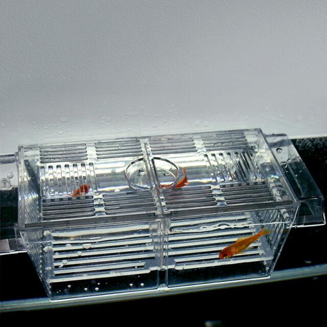 4 in 1 Floating Fish Hatchery Trap Fry Breeding Aquarium Tank Isolation Box Pro