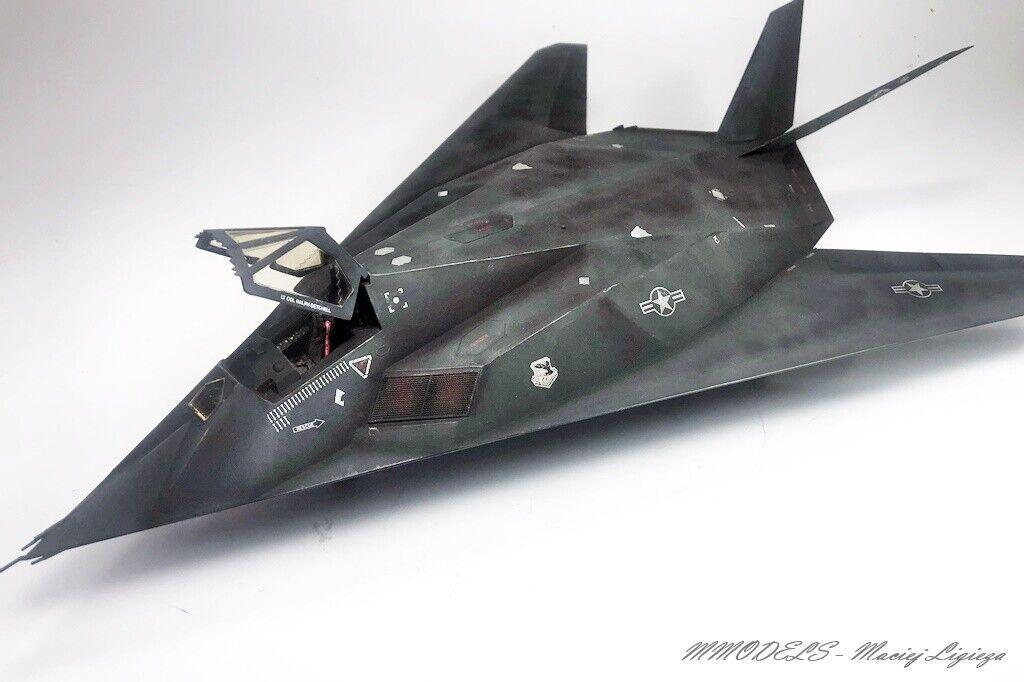 F-117A Nighthawk - 1 48 - gebaut und gemalt (Pro-Built)