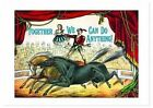 Circus Bicyclists Anniversary Card 9781595839664 Laughing Elephant 2016