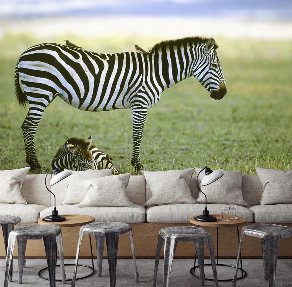 3D Grassland Zebras 901 WallPaper Murals Wall Print Decal Wall Deco AJ WALLPAPER