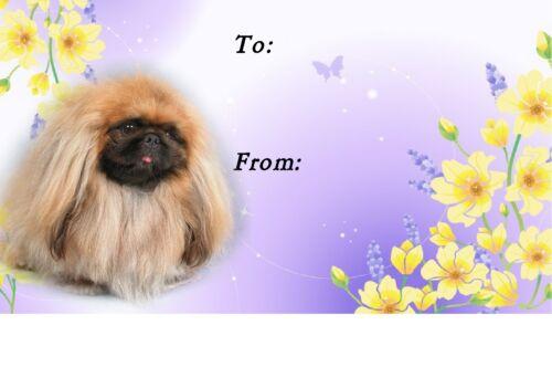 Pekingese Dog Self Adhesive Gift Labels by Starprint