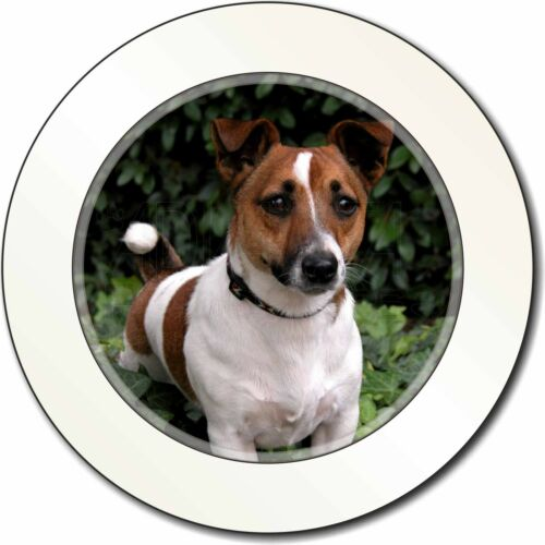 Jack Russell Terrier Dog Car/Van Permit Holder/Tax Disc Gift, AD-JR55T