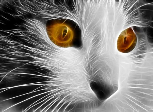 Black /& white  cat fractal cross stitch chart also available as A4 glossy print