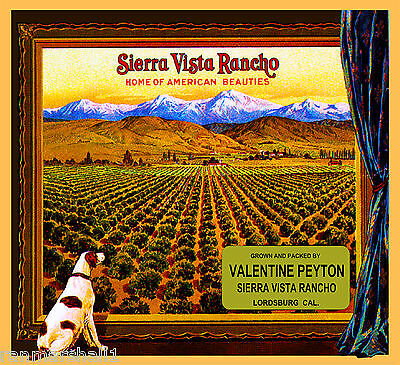 La Verne Sierra Vista Rancho Lordsburg Dog Orange Citrus Fruit Crate Label Print
