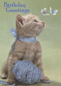 Image Is Loading HAPPY BIRTHDAY GREETINGS CARD CAT KITTEN WITH BALL
