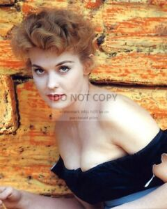 2e981cfe062 Image is loading ACTRESS-DONNA-DOUGLAS-PIN-UP-8X10-PUBLICITY-PHOTO-