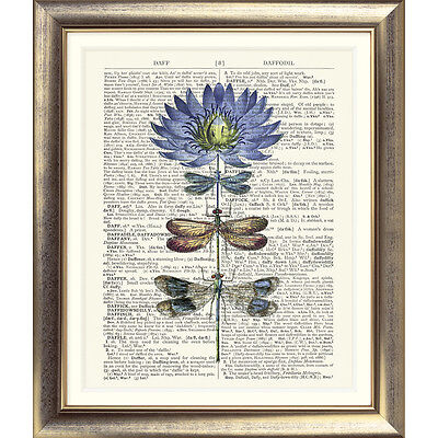 ART PRINT ORIGINAL ANTIQUE BOOK PAGE Vintage Dictionary Dragonfly Flower VINTAGE